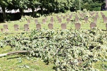 So sah es auf dem Alten Friedhof an der Nettergasse aus. FOTO: L. Hammer
